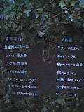 29_ny_menu