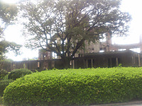 203hiroshima