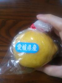Kokusan_lemon