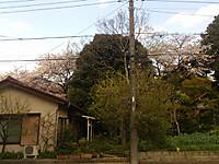 17sp4_13_25