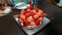 19_12_22_xmas_cake2