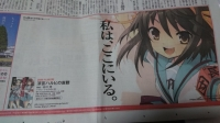 20_11_8_haruhi