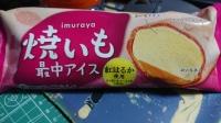 21_9_8_yakiimo_monaka_ice